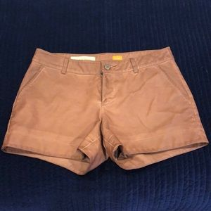 Anthropologie Pilcro faux leather shorts